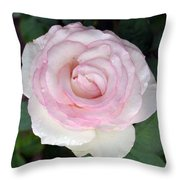 Pretty In Pink Rose Throw Pillow