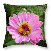 Pretty In Pink Zinnia Throw Pillow