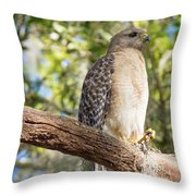 Pretty In Red Throw Pillow