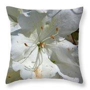 Pretty In White Throw Pillow