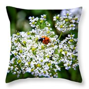 Pretty Little Ladybug Throw Pillow by Mariola Bitner