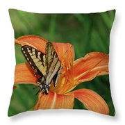 Pretty Orange Lily With A Butterfly On It's Petals Throw Pillow
