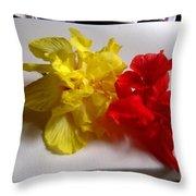 Pretty Pair - Double Hibiscuss Throw Pillow