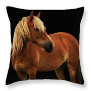 Pretty Palomino Pony Throw Pillow