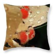 Pretty Peach Hibiscus  Throw Pillow