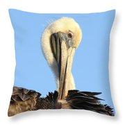 Pretty Pelican Throw Pillow