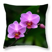 Pretty Pink And Proud Throw Pillow