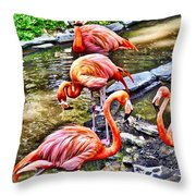Pretty Pink Flamingos Throw Pillow
