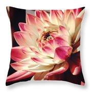 Pretty Pink Throw Pillow