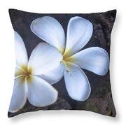 Pretty Plumeria Throw Pillow