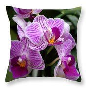 Pretty Purple And White Throw Pillow