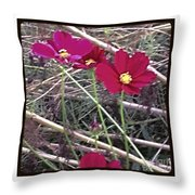Pretty Red And Yellow Flowers In The Twigs Throw Pillow