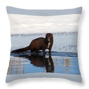 Pretty Reflecting Mink Throw Pillow