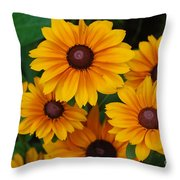 Pretty Rudbeckia Flowers In Bloom Throw Pillow