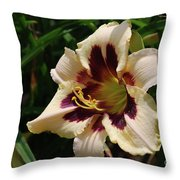 Pretty Single Blooming Daylily In A Garden Throw Pillow
