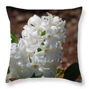 Pretty White Hyacinth Flower Blossom Flowering Throw Pillow