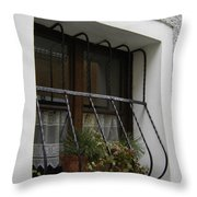 Pretty Window Throw Pillow