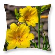 Pretty Yellow Throw Pillow