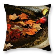 Priceless Leaves Fall Throw Pillow