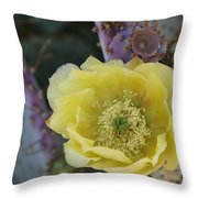 Prickly Blossom Throw Pillow