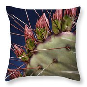 Prickly Buds Throw Pillow by Kelley King