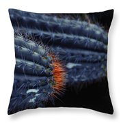 Prickly Hooters Throw Pillow