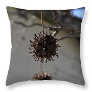 Prickly Liquidamber Pod Throw Pillow