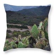 Prickly Pear Cacti Rancho Sierra Vista Satwiwa Mountains Throw Pillow