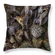 Prickly Pear Cactus At Tonto National Monument Throw Pillow