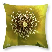 Prickly Pear Cactus Flower Throw Pillow