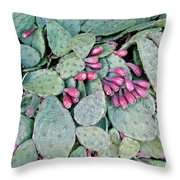 Prickly Pear Cactus Fruits Throw Pillow