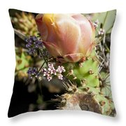 Prickly Pear Flower 4 Throw Pillow