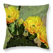 Prickly Pear Flowers H42 Throw Pillow