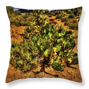 Prickly Pear In Bloom With Brittlebush And Cholla For Company Throw Pillow