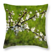 Pride Of The Hedgerow Throw Pillow