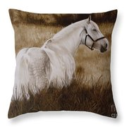 Pride Of The Lough  Throw Pillow