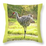 Primping Sandhill Crane Throw Pillow