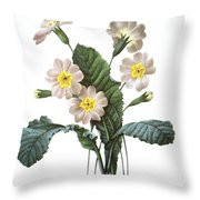 Primrose (primula Aucalis) Throw Pillow