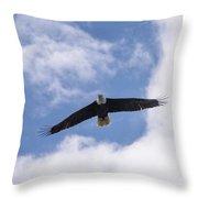 Prince Rupert Eagle Flight Throw Pillow