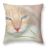 Prince Willy Throw Pillow by Laura Brightwood