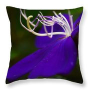 Princess Flower Flow Throw Pillow