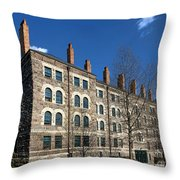 Princeton University Dod Hall Throw Pillow