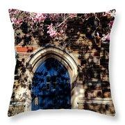 Princeton University Door And Magnolia Throw Pillow