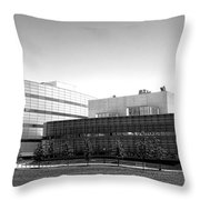 Princeton University Neuroscience Institute And Peretsman Scully Throw Pillow