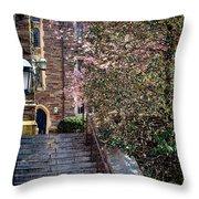 Princeton University Old Stairway Throw Pillow