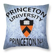 Princeton University Princeton Nj. Throw Pillow