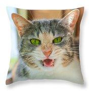 Priscilla A Cat Of My Mother Throw Pillow