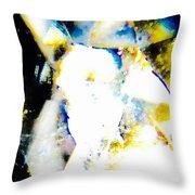 Prismatic, Three Throw Pillow