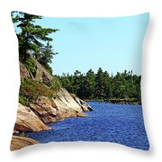 Pristine Beauty Of The French Throw Pillow