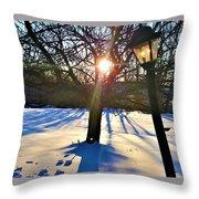 Pristine Snowfield Throw Pillow
